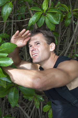 explores: Muscular handsome Caucasian man shields face from bright sun light as he explores thick jungle mangrove swamp