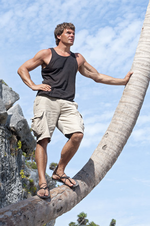 low angle views: Handsome muscular Caucasian man in shorts and sandals stands on leaning coconut palm tree under sunny sky to view the scenery