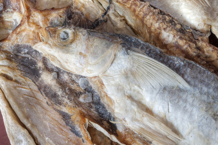 mullet: Closeup of dry salted whole mullet fish