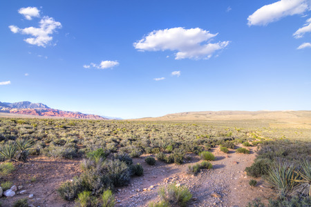las vegas  nevada: Scenic landscape in Red Rock Canyon desert of Las Vegas with blue sky and puffy white clouds