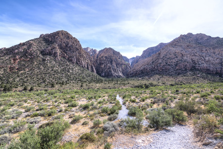 desert landscape: Beautiful scenic desert landscape with Ice Box Canyon surrounded by rugged rocky mountains in Red Rock Canyon state park in Nevada