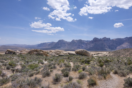 red rock national conservation area: Rugged arid valley of Red Rock national conservation area with rocky mountain peaks and desert shrubbery in late spring Stock Photo