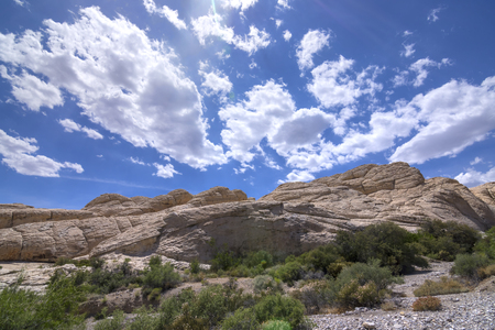 red rock national conservation area: Aztec sandstone geological rock formations along seasonal wash under blue sky with cumulus clouds during sping in Red Rock national conservation area Nevada