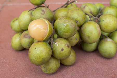 background green: Closeup bunch of whole fresh Melicoccus bijugatus Spanish limes with one peeled revealing soft juicy pulp on red surface