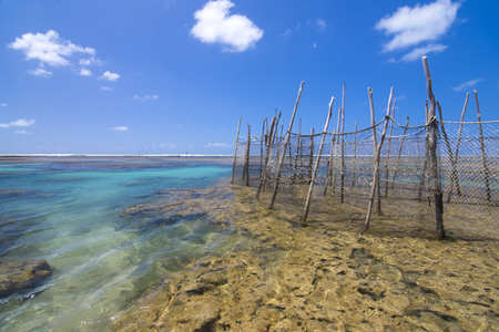 seascape: Scenic seascape of shallow coral reefs at low tide with traditional fish trap nets under clear sunny sky in Maceio, Alagoas, Brazil Stock Photo