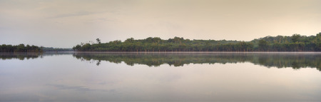 water  panoramic: Panoramic of calm still water of forest fringed Urubu River tributary in Amazon during early morning dawn Stock Photo