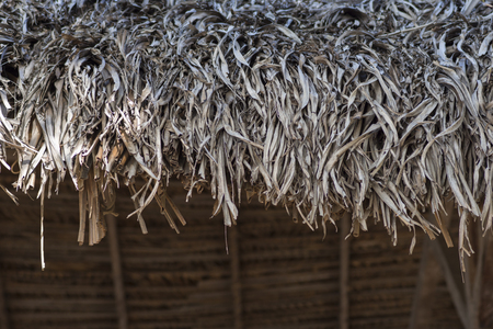 Closeup detail of roof overhang consisting of dried thatched palm on indigenous tropical style building