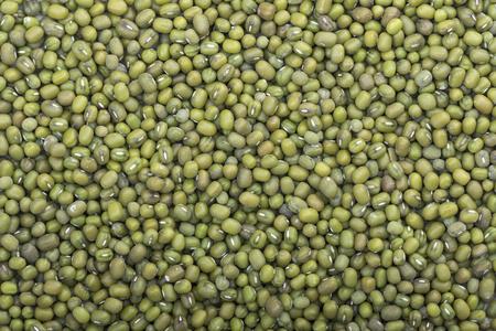 vigna: High angle closeup shot of harvest of whole green Vigna radiata mung beans filling frame of camera