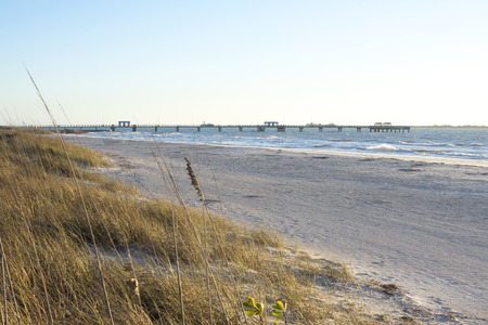 fishing pier: Scenic sandy beach with sea oats and gulf fishing pier at Fort Desoto Park in Florida on sunny day