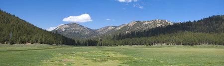 panoramic sky: Beautiful panoramic of green grass meadow surrounded by pine forested mountains under blue sky on the Kern Plateau in California Stock Photo