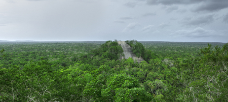 calakmul: Scenic panoramic of Maya Temple 1 rising above dense green jungle in Calakmul, Campeche, Mexico under dark gray sky