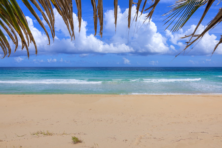 bordering: Beautiful Caribbean sea with tan colored sand of Resaca Beach on Isla Culebra with edge of palm frond bordering top of frame Stock Photo