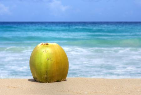 frutas tropicales: coco amarillo maduro con la cáscara se sienta en la arena con el mar Caribe color turquesa azul en el fondo bajo el cielo nublado