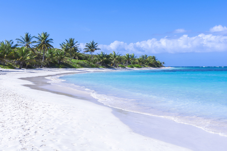 White sandy beach with turquoise blue Caribbean water and coconut palms on beautiful Flamenco Beach on Isla Culebra on clear sunny day