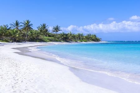 Witte zandstrand met turquoise blauwe Caribische water en kokospalmen op prachtige Flamenco Beach op Isla Culebra op heldere zonnige dag