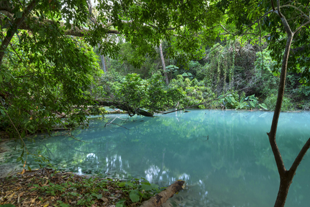 Pristine turquoise blue water in quiet pool surrounded by dense jungle vegetation above La Conchuda waterfall in Rio la Venta Canyon in Chiapas, Mexico