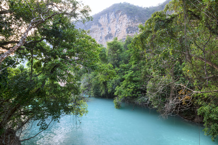 Pristine landscape of turquoise blue water surrounded by dense tropical vegetation in Rio la Venta Canyon in Chiapas, Mexico