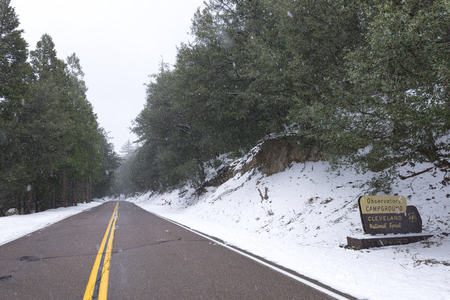 Wide angle snow falling on pine trees and road at entrance to Observatory Campground in Cleveland National Forest on Palomar Mountain, California