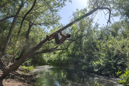 Wide angle muscular adventure man climbing leaning tree over stream in forest Stockfoto