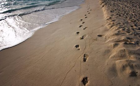 footprints sand: Path of footprints left on the sunrise shore