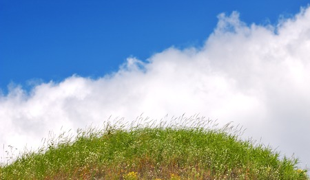 Fresh green grass with bright blue sky and clouds background Stock Photo - 1484024