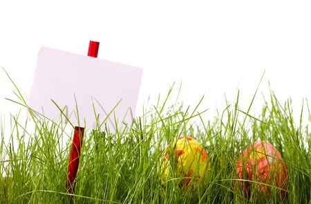 Easter eggs and blank add sign hidden in fresh green grass. Isolated on white background Stock Photo - 2595890