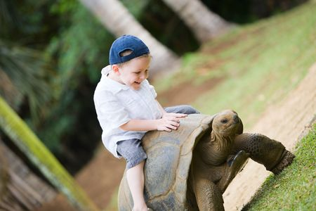 Fun activities in Mauritius. 4 years old boy riding giant turtle. photo