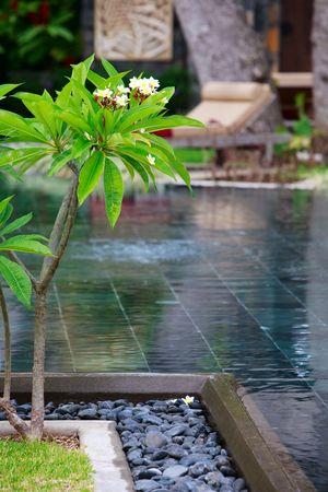 sunshades: Beautiful wellness area and swimming pool in luxury resort