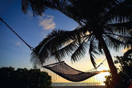 hamaca: Bellas vacaciones puesta de sol. Playa tropical con palmeras y hamaca.
