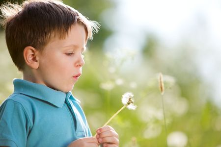 Cute 4 years old boy with dandelion outdoors at sunny summer day Stock Photo - 6336734