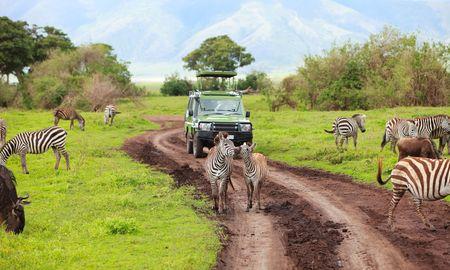 Game drive. Auto Safari su game drive con animali intorno, cratere Ngorongoro in Tanzania.  Archivio Fotografico