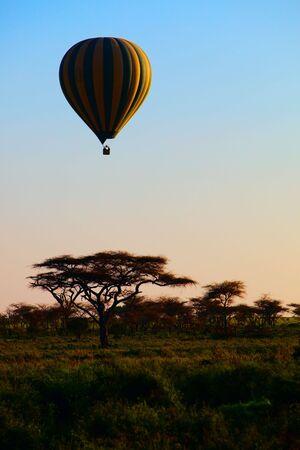 Early morning flight of hot air balloon over Serengeti national park, Tanzania photo