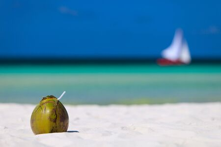 Coconut on perfect white sand tropical beach in Boracay, Philippines
