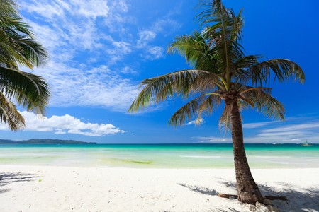 Perfect tropical white sand beach Stock Photo