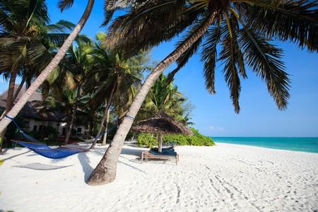 Landscape of beautiful tropical beach in Zanzibar Tanzania photo