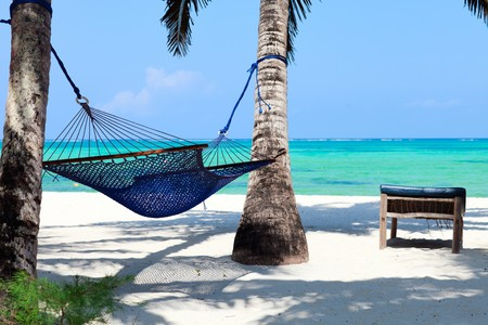 tropical paradise: Perfect tropical paradise beach of Zanzibar island with palm trees and hammock Stock Photo