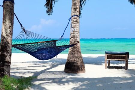 zanzibar: Perfecte tropisch paradijs strand van Zanzibar eiland met palm bomen en hang mat
