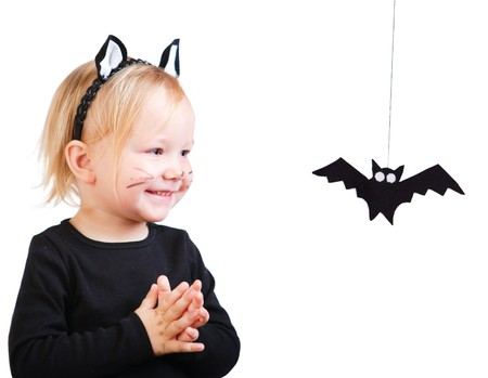 cute halloween: Halloween dressed toddler girl in black cat costume looking to small bat Stock Photo