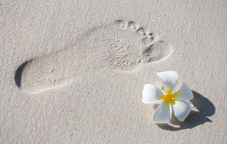 Footprint and frangipani flower on white sand tropical beach photo