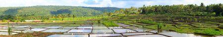 Panorama of beautiful rice field full of water at Northern Bali photo
