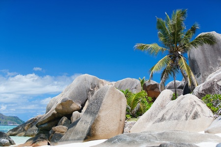 d argent: Beautiful Anse Source d Argent beach in Seychelles