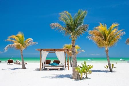 Camas de playa entre palmeras en perfecto costa tropical