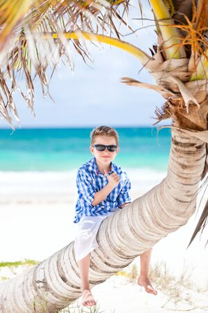 Little boy sitting on palm at Caribbean beach photo