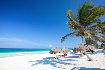 unspoilt: Perfect Caribbean beach in Tulum Mexico Stock Photo