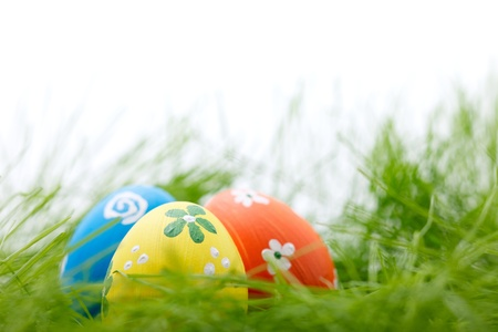 Three colorful easter eggs in a fresh grass photo