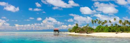 牧歌的な島とターコイズ ブルーの海の水のパノラマ