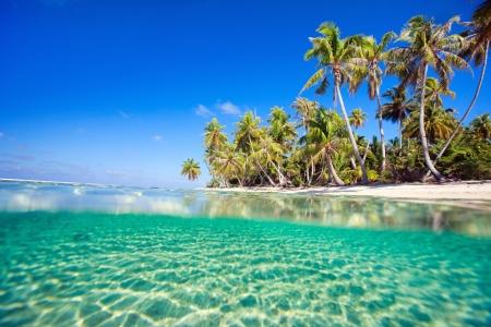 프랑스 령 폴리네시아의 티케 하우의 산호 섬의 아름다운 열대 섬