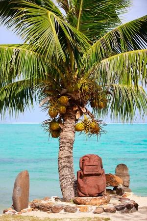 french polynesia: Beautiful exotic coast at Moorea in French Polynesia Stock Photo