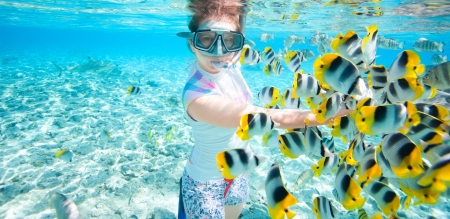 Woman snorkeling in clear tropical waters among colorful fish photo