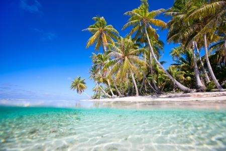 Beautiful tropical island at Tikehau atoll in French Polynesia photo
